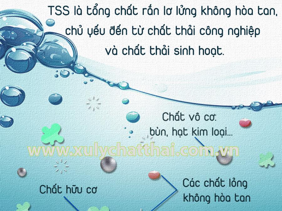 TSS là gì